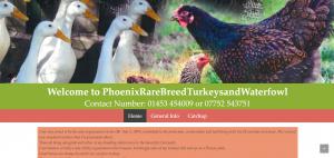 Rare Breed Turkeys